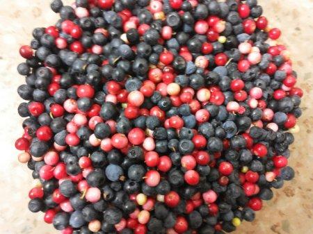 перебрать ягоду от листьев