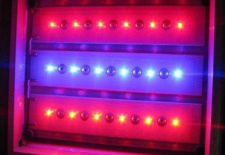 фитолампы светодиодные