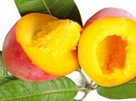 манго с косточкой