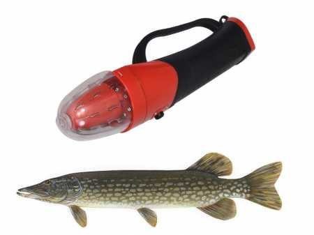 как выглядит рыбочистка