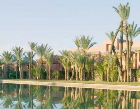 пальмы и погода в мае марокко