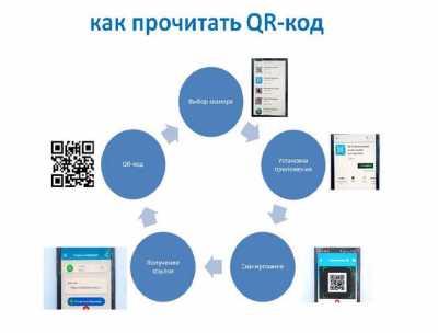 Как прочитать QR код онлайн с камеры телефона