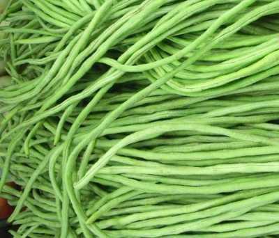 фасоль стручковая спагетти f1